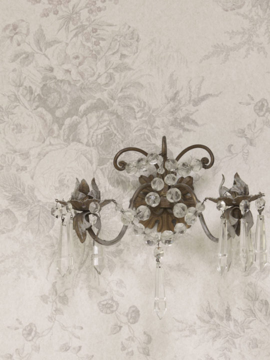oyster-roses-wallpaper-3